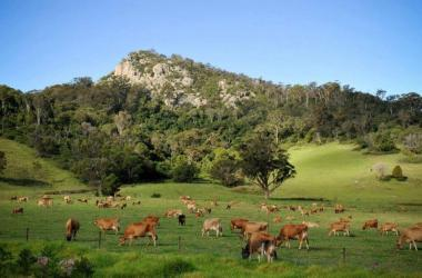 Image of Explore Eurobodalla